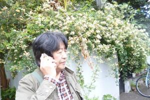 ある日のヴァンスタ前。花がきれいですねー。