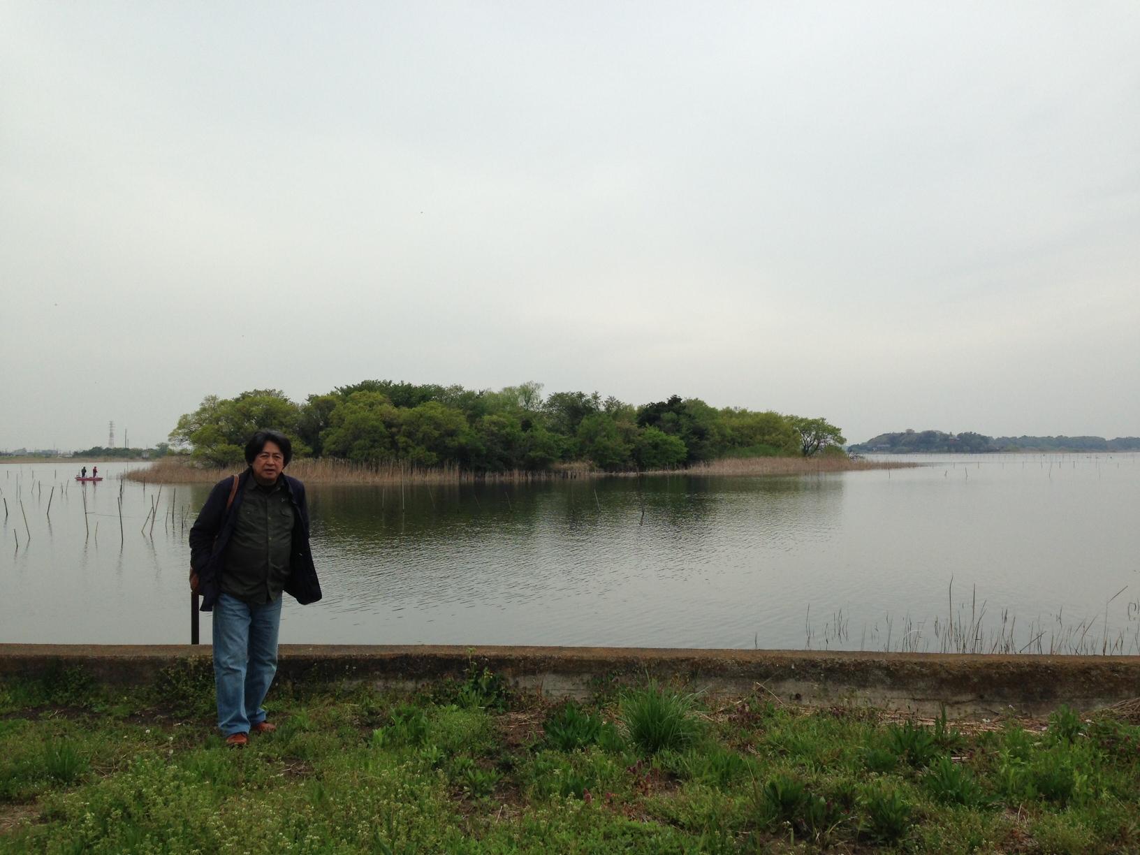 小雨に烟る牛久沼。白鳥や鴨が泳いでいました。